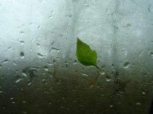 Consejos conducción bajo la lluvia
